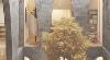 Catenary Arches Define 'Venecia 20' Housing Complex by Inca Hernández in Mexico City