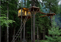 The Ultimate Treehouse