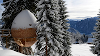 Pinecone Treehouse in the Italian Alps