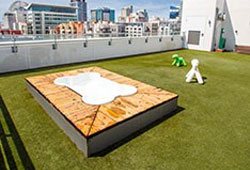 Artificial grass on a rooftop with view of buildings in the distance.