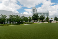 View of lawn with trees and office building in background