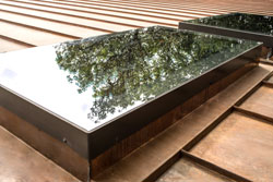 Skylight with tree reflecting in window