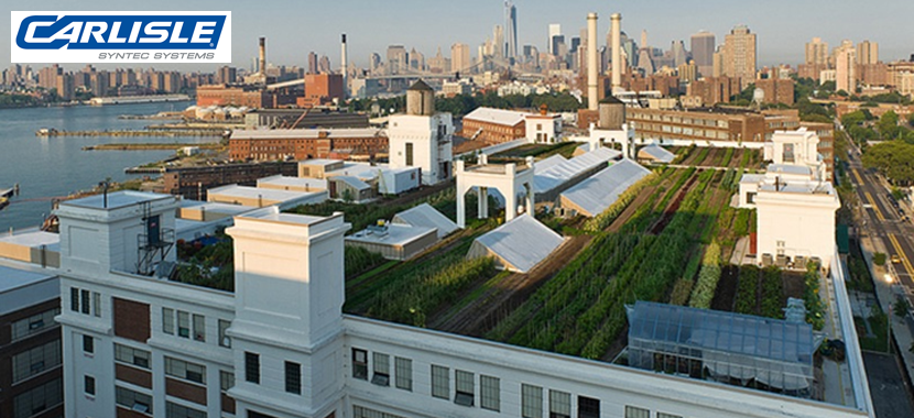 Vegetated Roofing Systems